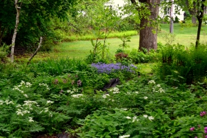 Airmetih Naturals Shade Gardens